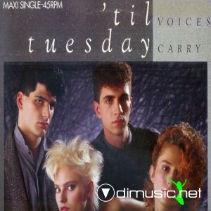 'Til Tuesday - Voices Carry (Vinyl, 12'') 1985