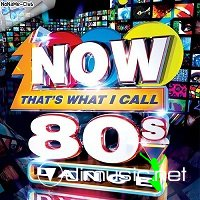 Now Thats What I Call 80s Dance