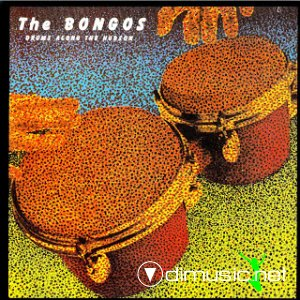 The Bongos - Drums Along the Hudson (1982)