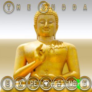 VA - The Budda Experience (2013)
