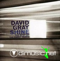 David Gray - Shine - The Best Of The Early Years (2007)