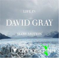 David Gray - Life In Slow Motion (CD, Album)