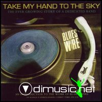 The Blues Wire - Take My Hand To The Sky (2007)