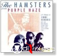 The Hamsters - Discography