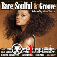 VA -  Rare Soulful & Groove - Volume 1 (the collector series) 2013