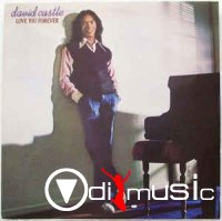 David Castle - Love You Forever (Vinyl, LP) 1979