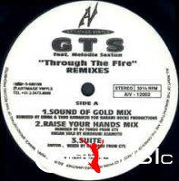GTS feat. Melodie Sexton - Through The Fire (Remixes)