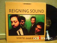 Reigning Sound - Break Up... Break Down (Vinyl, LP, Album) 2001