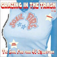 Various - Grazing In The Trash Vol. 2 (CD)