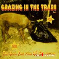 Various - Grazing In The Trash Vol. 1 (CD)