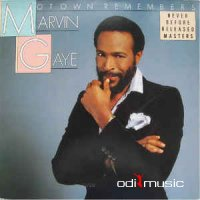 Marvin Gaye - Motown Remembers Marvin Gaye (Vinyl, LP, Album)