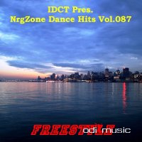IDCT Presents - VA NrgZone Dance Hits Vol.087 - Freestyle (2010)