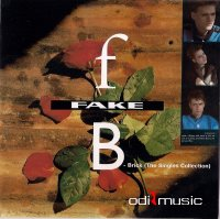Cover Album of Fake - Brick (The Singles Collection) (2005)