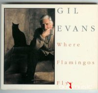 Gil Evans -  Where Flamingos Fly (1971)