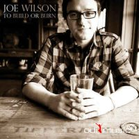 Joe Wilson - To Build Or Burn (CD)