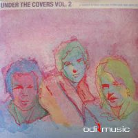 Various - Under The Covers Vol. 2 (Vinyl, LP)