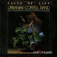 Larry Coryell - Facts of Life (1983)