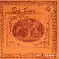 Flock - Cool Living Water (Vinyl, LP, Album)