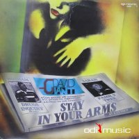 David Giant - Stay In Your Arms (Vinyl, 12'') 1988