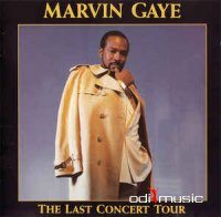 Marvin Gaye - The Last Concert Tour (CD)
