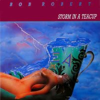 Bob Robert - Storm In A Teacup (Vinyl)