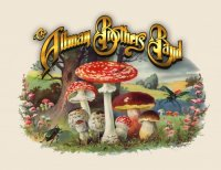 The Allman Brothers Band - Discography 49 albums (1968-2011)
