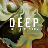 DEEP IN THE RHYTHM VOL. 19 (2018)